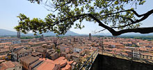 Lucca, Torre Guinigi, Panoramic View